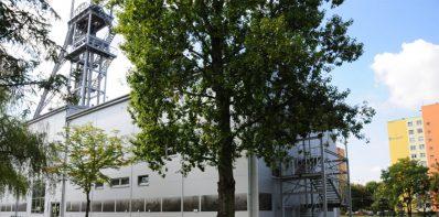 Centrum Wspinaczkowe Poziom 450 - Sosnowiec